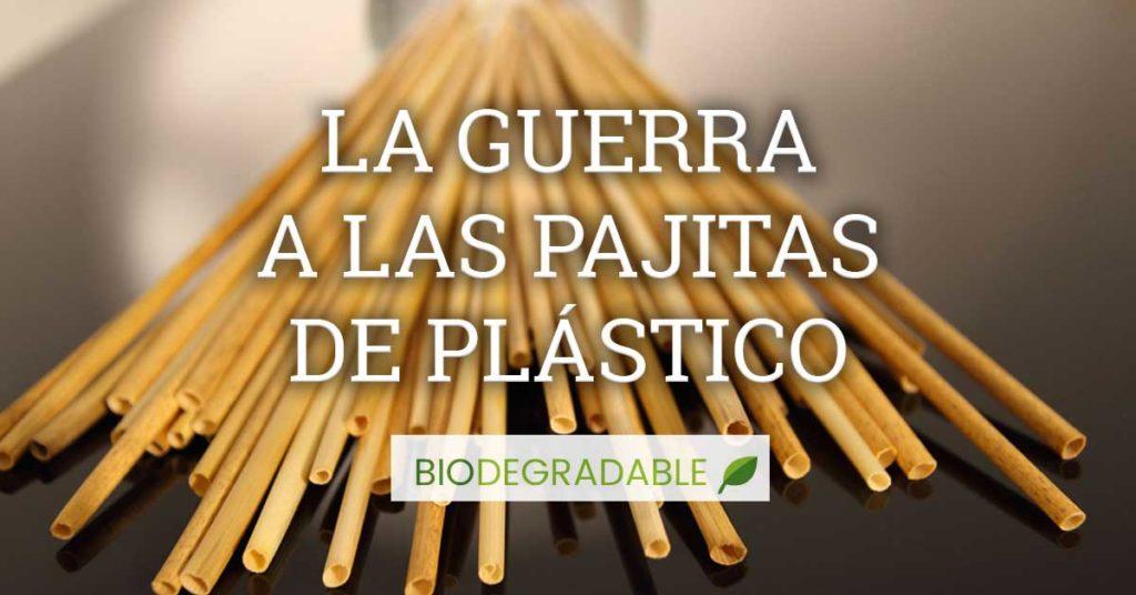 Pajitas biodegradables y reutilizables