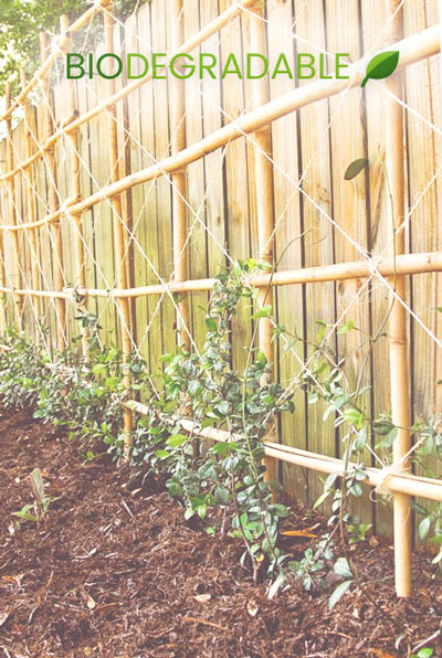 decoracion de jardín con bambú